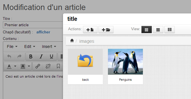 SPXTYNIMCE : Editeur wysiwyg : Tinymce + file manager